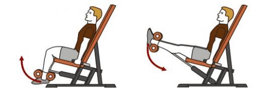 Alternatives au leg extension machine