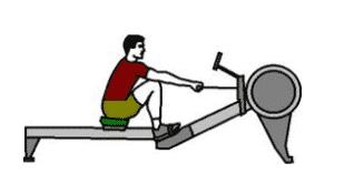 Alternatives au rameur exercice